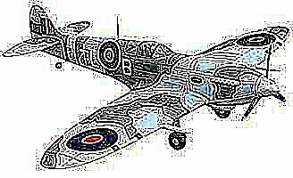Dynam Spitfire Parts