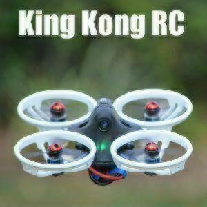 KingKong RC | LDARC Drones & Quads